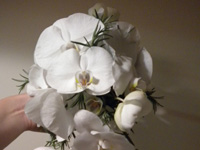 Shower Bouquet with White Phalaenopsis Orchids and Foliages
