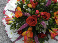Small Posy Pad Funeral Tribute - Edged in Ribbon, based in White Chrysanthemums with a spray of flowers in Reds and Pinks