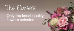 The Flowers, only the finest quality flowers selected for Weddings, Conferences and Funerals
